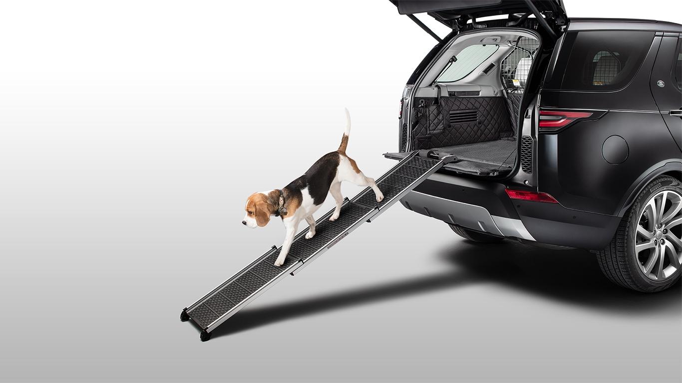 Pet Access Ramp